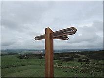 NO1805 : Signpost near Edge Head, Lomond Hills by Bill Kasman