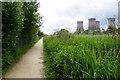 SJ5585 : The Transpennine Trail near Fiddlers Ferry by Bill Boaden