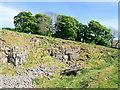 NY7745 : Limestone quarry above lime kiln by Trevor Littlewood