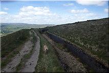 SD9617 : Drain, Blackstone Edge Moor by Michael Graham
