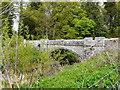 NO3848 : Bridge over Dean Water by derek menzies