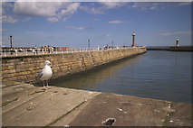 NZ8911 : West Pier, Whitby by Mark Anderson