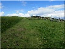 NO2206 : Path from Craigmead car park, Lomond Hills by Bill Kasman