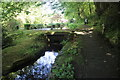 SS2322 : Docton Mill Leat and Pond by Nigel Mykura