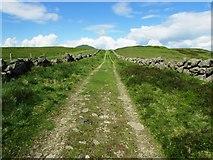NO2206 : Track to West Lomond by Bill Kasman