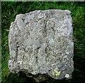 NO2206 : Boundary Stone, Lomond Hills by Bill Kasman