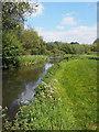 SU6759 : River Loddon at Lillymill Farm by Des Blenkinsopp