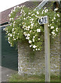ST6367 : To Charlton Bottom by Neil Owen