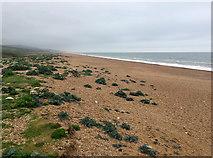 SY5088 : Cogden Beach by John Allan