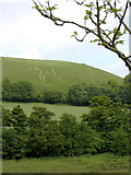ST6601 : View to the Cerne Abbas giant by Gareth James