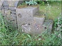 SK0395 : Milestone & mounting block, Glossop by MilestoneSociety
