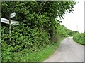 SO3628 : Straight on for Balls Cross and Longtown by Christine Johnstone
