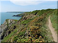 SM8406 : The Pembrokeshire Coast Path near Longberry Point by Dave Kelly
