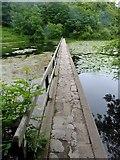SR9694 : Bosherton pond lily lake footbridge by Steve  Fareham