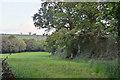 SS7408 : Mid Devon : Grassy Field by Lewis Clarke