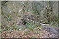 SX4961 : Footbridge, The Brake by N Chadwick