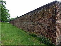 NZ1758 : Wall of Walled Garden, Gibside by PAUL FARMER