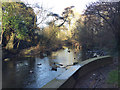 SP3677 : River Sowe beneath Sowe Viaduct, southeast Coventry by Robin Stott