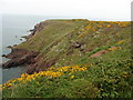 SM7910 : The Pembrokeshire Coast Path near Tower Point by Dave Kelly
