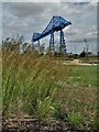 NZ4921 : A view of Middlesbrough Transporter Bridge (1911) by Neil Theasby