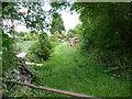 SO9662 : Untidy garden by Jeff Gogarty