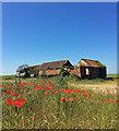 TF3664 : Derelict barns near Old Bolingbroke by Stephen Richards