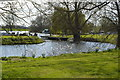 TL3671 : River Great Ouse by N Chadwick