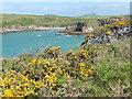 SM7323 : The Pembrokeshire Coast Path near Porthlysgi Bay by Dave Kelly