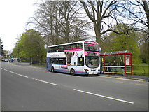SE3238 : Bus on Princes Avenue, Roundhay Park by Richard Vince