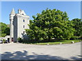 NJ7808 : A flowering chestnut tree by Stanley Howe
