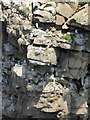 NZ4064 : Kittiwake towers by Oliver Dixon