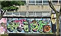 J3474 : Graffiti, Belfast (June 2017) by Albert Bridge