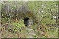 NH4316 : 'Stone Cave', Creag nan Eun Forest by Tim Heaton
