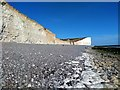 TV5596 : Chalk Cliffs at Birling Gap by PAUL FARMER