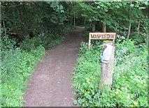 NO2407 : Path to Maspie Den, Lomond Hills by Bill Kasman