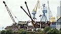 J3575 : Old steam cranes, Titanic Quarter, Belfast (June 2017) by Albert Bridge