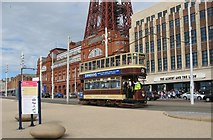 SD3035 : Heritage Tram on Blackpool Promenade by Stephen Armstrong