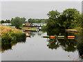 SP0647 : River Avon at Offenham by David Dixon