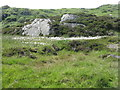 NR6654 : Cotton Grass on Carn na Faire by M J Richardson
