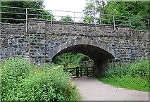 ST5673 : Railway Bridge by Anne Burgess