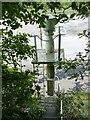 ST5574 : Leigh Woods Upper River Light by Alan Murray-Rust
