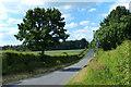 TF8018 : Peddars Way Roman Road by Mat Fascione