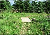 NO2604 : Path to Purin Hill, Lomond Hills by Bill Kasman