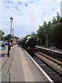 TQ5434 : Steam Engine at Eridge by Paul Gillett