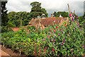 SP1772 : Kitchen garden, Packwood House by Derek Harper