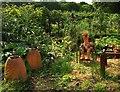 SP1772 : Flowerpot man, kitchen garden, Packwood House by Derek Harper