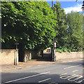 ST5874 : Pitch Lane, Cotham, Bristol by Robin Stott