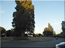 SU3521 : Roundabout on Bypass Road, Romsey by David Howard