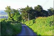 O0725 : Horans Lane, Killinarden, near Dublin by P L Chadwick
