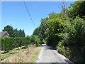 TQ4162 : Blackness Lane by Marathon